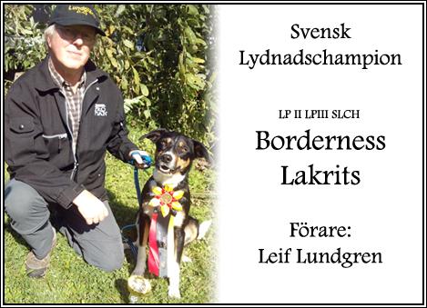 leif_lakrits_slch