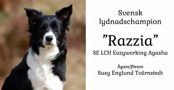 susy_razzia_selch